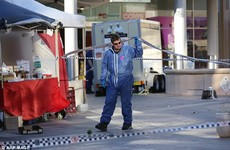 Three bystanders wounded after Sydney police shoot knife-wielding man