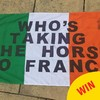 16 slogans only Irish fans could bring to the Euros