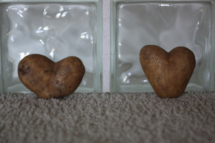 Love spuds (get it?)