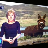 15 times Irish telly proved it's the most ridiculous thing in the world