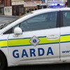 Gardaí get new crime scene kits to collect evidence at domestic violence calls