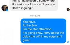 This girl is going viral for her responses to strangers friending her on Facebook