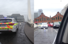 Gardaí called out to remove swan from bridge in Dublin