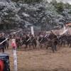 That massive Game of Thrones battle was filmed in this suburban Irish field