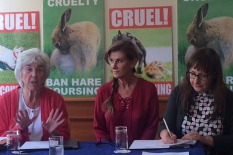 Maureen O'Sullivan TD, Linda Martin and Pauline McLynn.