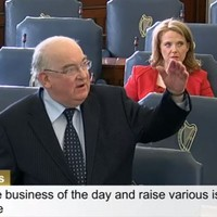 So they've been talking about seagulls in the Seanad again