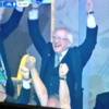 Michael D Higgins' joyful celebration of Brady's goal sums up just how Ireland is feeling