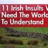 11 Irish insults we need the world to understand