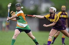 Offaly, Cork, Limerick, Kilkenny and Tipperary all claimed championship wins today