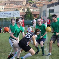 Team Ireland are on their way to the Quidditch World Cup