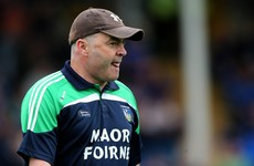 Limerick's great hurling week continues as they defeat Waterford to reach Munster final
