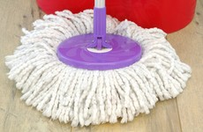 Man falsely accused of stealing mop loses €75k defamation claim