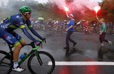 Dan Martin battles to fourth place as Peter Sagan wins Tour de France 2nd stage, takes overall lead