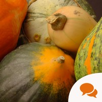 Squeeze some squash into your life