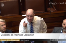 Healy-Rae says the people who gave the order to shoot cattle are 'a disgrace'
