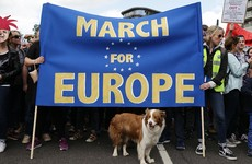 UK government dismisses four-million-signature petition calling for a second Brexit vote