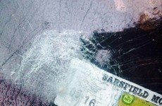 Mother has rock thrown at windscreen while driving on main road
