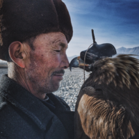 All of these amazing photos were taken on an iPhone