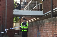 Man (20s) stabbed to death in Dublin