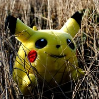 Poll: Have you downloaded Pokémon Go?