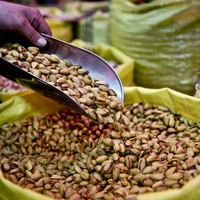 A nutty way to make money - the Taliban are stealing pistachios in Afghanistan