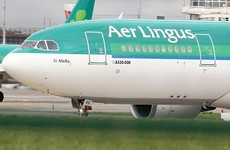 Aer Lingus flight from Frankfurt to Dublin delayed overnight due to thunderstorm