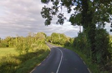 Woman and her son (14) killed after car crashes into tree