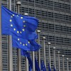 Looking for a job? Graduates are being urged to think about training at the EU