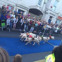 Forget the Galway Races, Roscommon had something much more interesting on last night