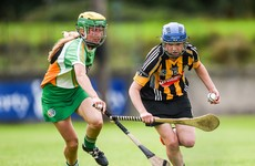 Kilkenny to take on Galway in All-Ireland semi-final after straightforward victory over Offaly