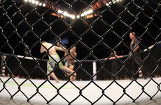 Judging amendments among new rule changes introduced for MMA