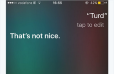 15 times Siri hated Irish people