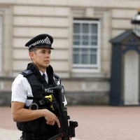 Man arrested after climbing over fence at Buckingham Palace 'had been drinking'