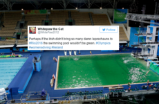 People are blaming the Irish for the Olympic pool mysteriously turning green