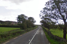 Man in his 50s dies after his minibus leaves the road