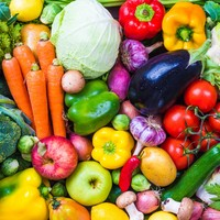 New bill in Italy aims to jail parents who impose vegan diet on children