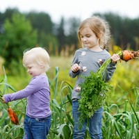 Poll: Should parents who impose a vegan diet on their children be sanctioned?