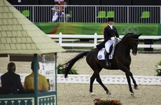 A great day for Ireland continues as Judy Reynolds qualifies for Olympic dressage final