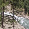 Child and parents die in river rapids after girl falls in while taking a selfie