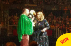 Adele brought an Irishman and his adorable dog up on stage in California
