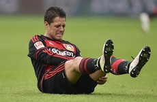 Javier Hernandez to miss start of Bundesliga season after falling down his apartment stairs