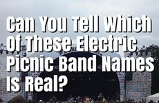 Can You Tell Which of These Electric Picnic Band Names Is Real?