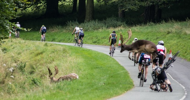 Triathlete who was knocked off bike by Phoenix Park stag qualifies for World Championships