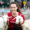Forty cows, 260 pigs and 200 goats will be getting on a plane from Shannon Airport to Rwanda