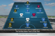 The Sunday Game experts have named their 2016 Hurling Team of the Year