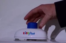 An Irish guy wowed people on Dragon's Den last night with his 'toilet flusher for kids'