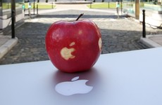 'No matter how popular it'd be, taking the €13bn Apple windfall isn't in Ireland's interest'