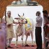 """Two women in India have been gang-raped """"for eating beef"""""""