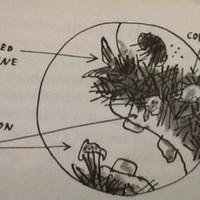 13 memories everyone who grew up loving Roald Dahl books will remember