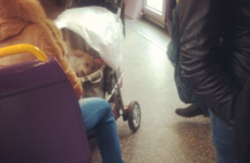 15 things that could only happen on Irish public transport